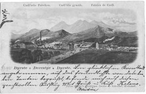 Fabrica de bere din Braşov împlineşte 120 de ani