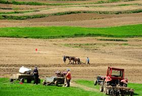 500 de fermieri braşoveni au absolvit cursurile Camerei Agricole în 2012