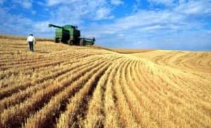 15.000 de fermieri braşoveni au primit peste 9 milioane de euro într-o lună