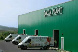 Nigerienii ar vrea să bea ceaiuri de la Dacia Plant