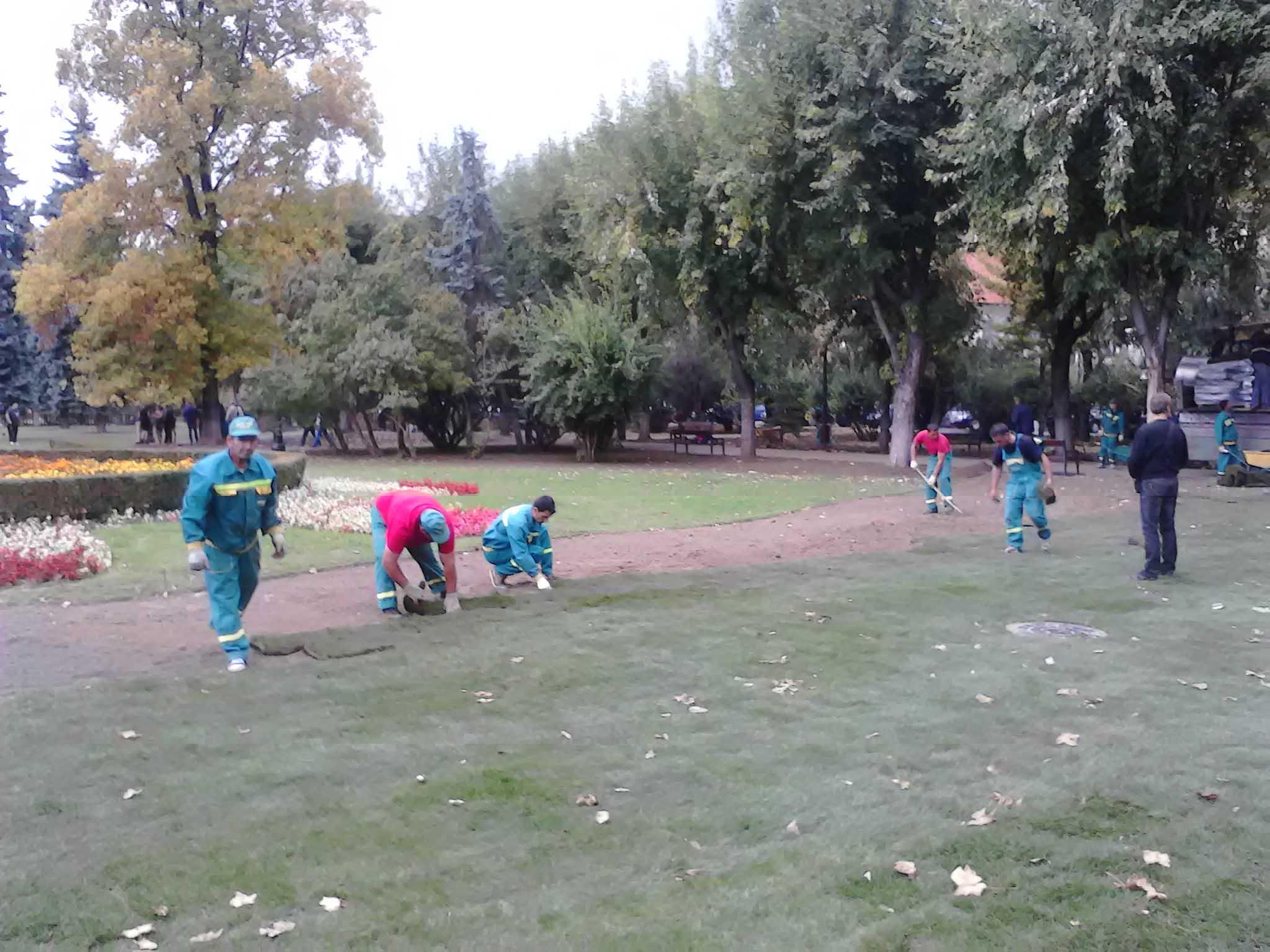Parcul Central a început să îşi schimbe înfăţişarea. Lucrările se vor finaliza la începutul lunii viitoare