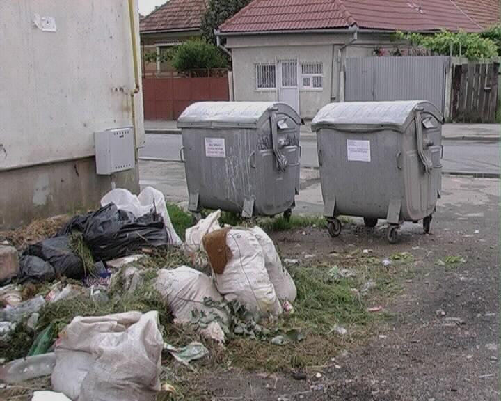 De la 1 iulie, localnicii din Rupea nu mai au unde să-și arunce gunoiul. Primăria vrea să ducă deșeurile la Sighișoara sau la Odorhei, fiindcă sunt cele mai ieftine soluții