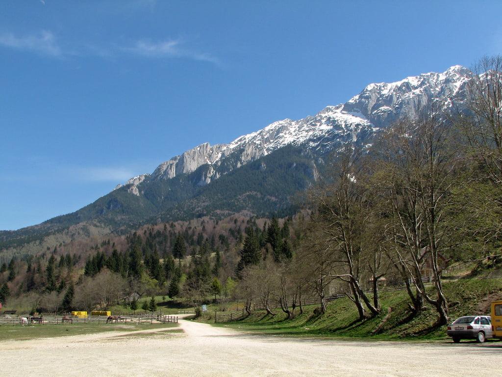 Parcul Național Piatra Craiului, inclus pe lista ariilor care ar urma să beneficieze de protecție legislativă suplimentară împotriva tăierilor de lemn