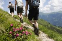 Salvamontiștii recomandă să purtați bocanci când plecați în drumeție pe munte, deoarece în această perioadă este posibil să vă întâlniți cu vipere