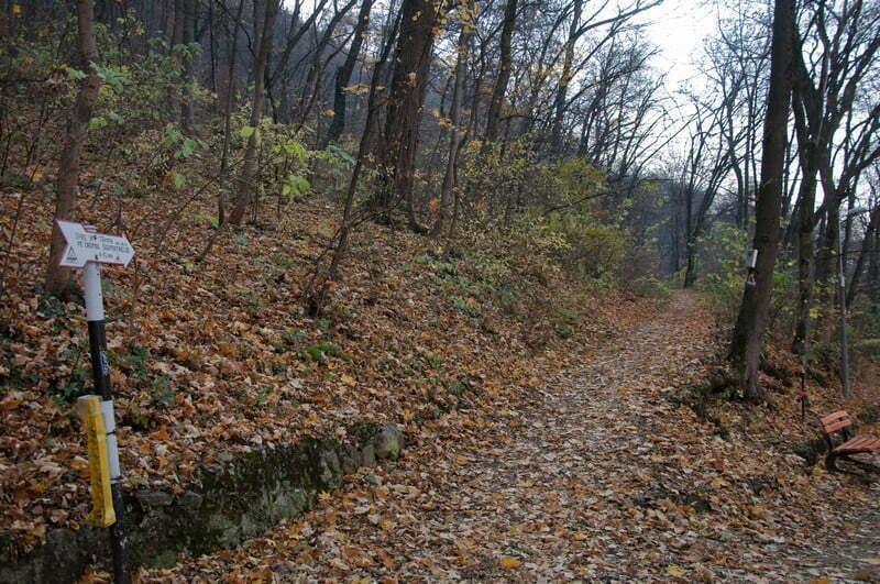 18 trasee turistice montane de pe Masivul Tâmpa și Postăvarul vor fi reabilitate. Se vor consolida potecile, reface marcajele deteriorate și înlocui săgețile indicatoare