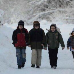 De mâine, elevii brașoveni merg din nou la școală. Excepție sunt câteva școli din județ