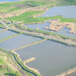 Lacul ilegal amenajat în Delta din Carpați, greu de desființat