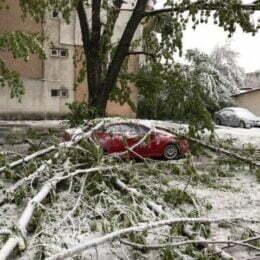 Bilanț după Codul Portocaliu la Brașov: 34 de pomi doborâți și mai multe mașini avariate