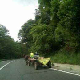 Căruțașii își fac propria lege pe drumurile europene și naționale din Brașov, contribuind la riscul producerii de accidente rutiere. Autoritățile ce fac?