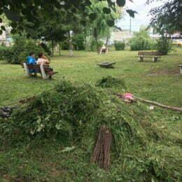 Curățenie generală în jurul spitalelor din Brașov, după ce brașovenii s-au plâns că spațiile verzi din aceste zone sunt invadate de bălării și gunoaie
