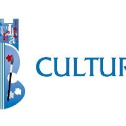 Dacă vrei să participi la elaborarea strategiei culturale a Brașovului, 2021-2035, trebuie să te înscrii online până duminică
