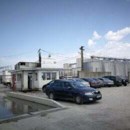 VIDEO Europig, ferma de porci a Grupului Sergiana, a înăsprit condițiile de securitate după ce pesta porcină a fost confirmată în județul vecin