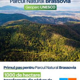 USR PLUS face primul pas spre Parcul Natural Brassovia: 1000 ha transformate din pădure de exploatare în pădure parc