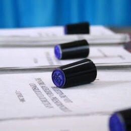 Peste 39.500 de brașoveni (7,62%) au votat până la orele 11.00. Mai puțini decât la parlamentarele din 2016