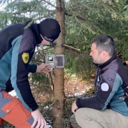 """VIDEO Rangerii din Piatra Craiului ne arată cam de câtă pricepere este nevoie pentru a instala o cameră de monitorizare, pe care un ursuleț cu abilități de """"inginer"""" a demontat-o zilele trecute"""