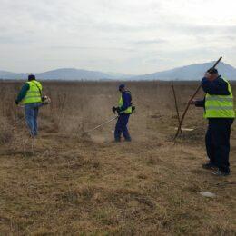 Curățenie de primăvară pe marginea drumurilor județene. Se pregătește terenul pentru plantări, dar și pentru viitoarele piste de biciclete
