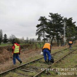 Reprezentanții CFR au demarat curățenia generală pe marginea liniilor de cale ferată, după ce polițiștii locali i-au somat. Dacă nu se conformau, riscau o amendă de până la 50.000 de lei