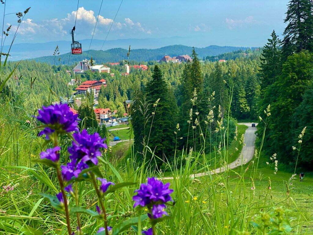 Panorama statiunea Poiana Brasov, vara