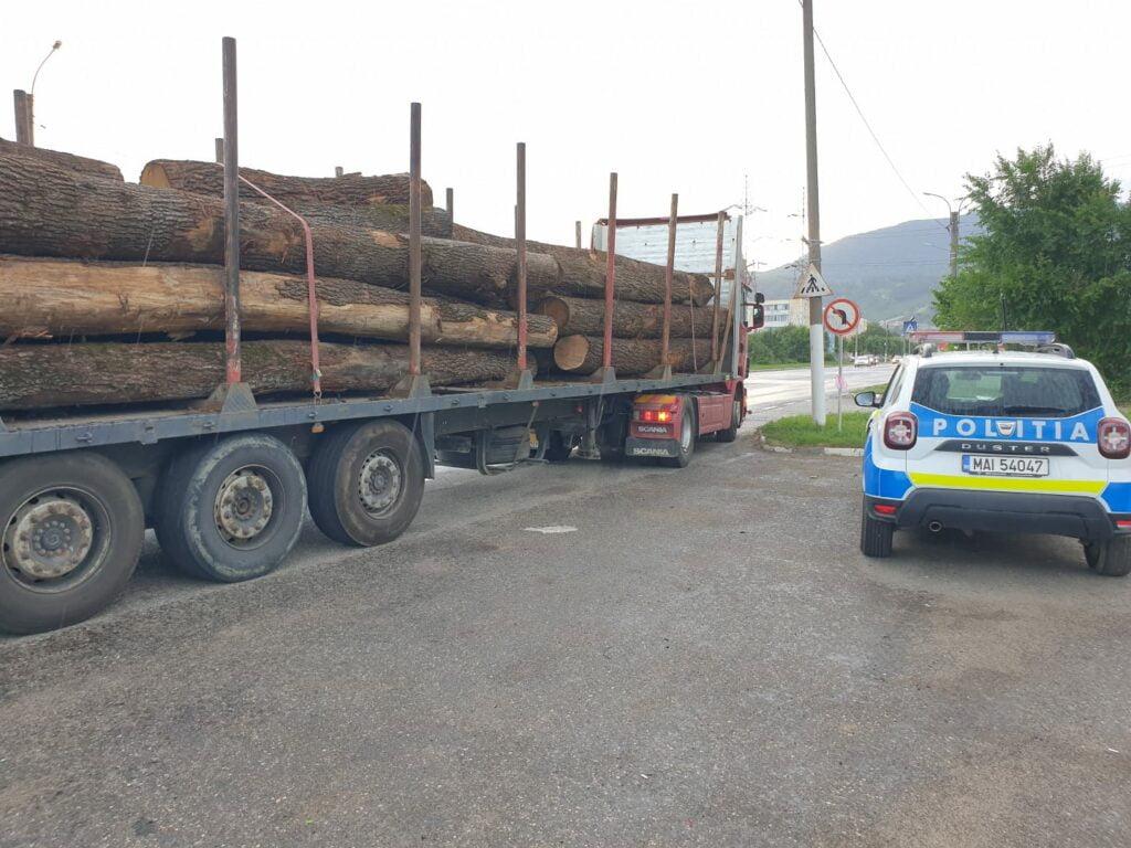 Controale politie Brasov mafia lemnului
