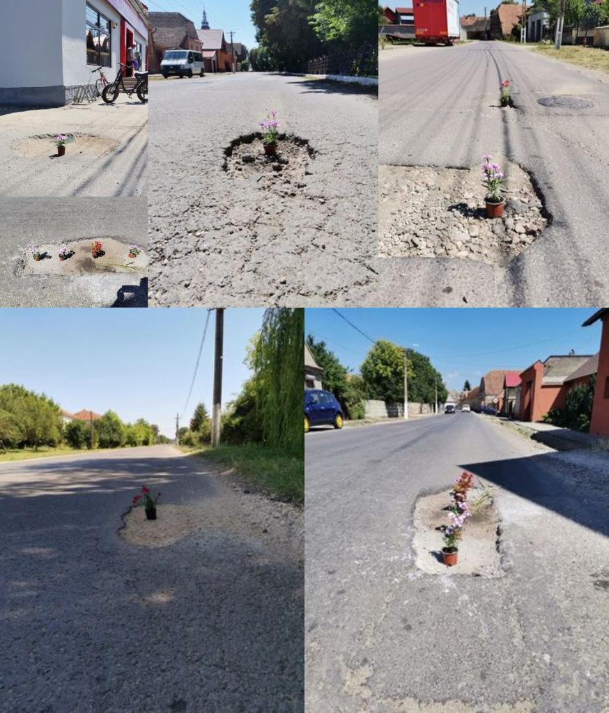 Locanici din Hălchiu Brașov au plantat flori în gropile de pe străzi
