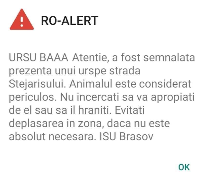 """RO-ALERT de cârciumă: """"URSU BAAA"""""""